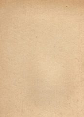 牛皮纸A4 250g货号888.LS158