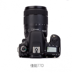 佳能(Canon)EOS 77D 单反数码照相机 货号888.Ai310