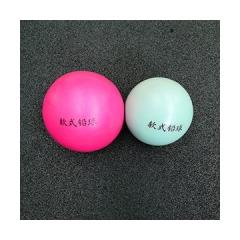软式练习铅球(1kg 颜色随机)    货号888.JQ713