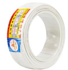 天坛TianTan塑铜线BV家装线国标铜电线电缆铜芯硬线 (95m-1平方-白色) JC.434