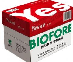 益思(YES SILVER)高白复印纸B5  70G   8包/箱   500页/包  XH.533