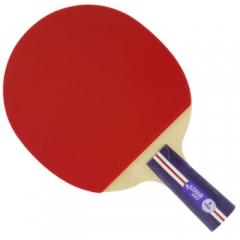 红双喜DHS 一星双面反胶乒乓球拍1星1006乒乓拍 单拍   TY.1123