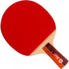 红双喜DHS乒乓球拍 R2006直拍双面反胶 弧圈结合快攻单拍     TY.1201