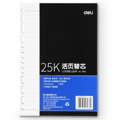 得力(deli)25K90张活页笔记本替芯 适合6孔20孔记事本子7938 (适用于得力3158)   XH.683