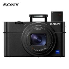 索尼(SONY)DSC-RX100M6 黑卡数码相机 1英寸大底(蔡司24-200mm F2.8-4.5镜头 4K视频 触摸对焦 ) ZX.308