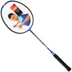 红双喜(DHS)羽毛球拍单拍 碳复合羽拍 初学训练(已穿线)4208 已穿线   TY.1254