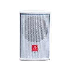 湖山 音箱 HY100  6.5寸会议音箱  IT.839