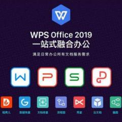 金山WPS Office 2019专业版(一年服务)    RJ.022