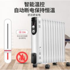 先锋(Singfun)取暖器 电暖器 电暖气家用 电暖炉 暖气片 电热油汀 节能省电 干衣加湿DS6111 DQ.1445