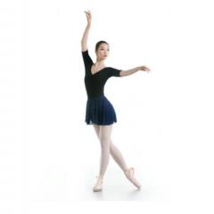 艺考舞蹈套装 (包含舞蹈艺术服、舞蹈鞋、舞蹈专用内裤、连裤袜、半身裙)    TY.1162