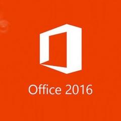 微软(Microsoft) OfficeStd 2016 Office2016标准版  RJ.019