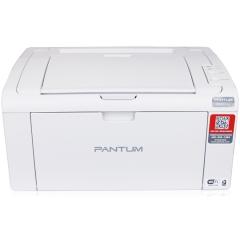 奔图(PANTUM)P2506 激光打印机(06系列) DY.366