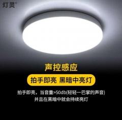灯灵 声控感应灯光控雷达楼梯间创意现代吸顶灯 LED灯 22cm-18w声控感应 JC.1553