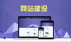 网站开发  网页建设