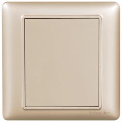 施耐德电气(Schneider Electric)开关插座面板 空白面板 白板 盖板 睿意系列 金色A3E50_WG