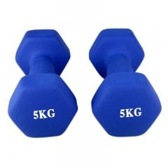 诚悦运动健身器材磨砂浸塑哑铃10公斤 CY-102蓝色 (二只装 单只5公斤)