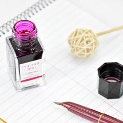 日本百乐(PILOT)钢笔墨水彩墨 踯躅 15ml INK-15-TT原装进口