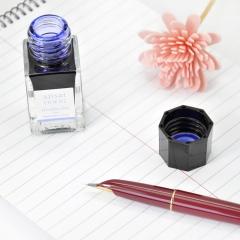 日本百乐(PILOT)钢笔墨水彩墨 紫阳花 15ml INK-15-AJ原装进口