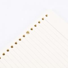 晨光(M&G)文具B5/26孔活页本芯 8mm横线活页本子替芯 线圈纸 活页笔记本替换内芯 100页/包APY9G457