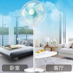 长城(CHANGCHENG)18寸电风扇/450mm落地扇/炫酷五叶风扇/摇头电扇 商用扇FS-45(3)II