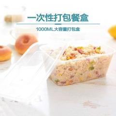 庭好 长方形一次性餐盒1000ML 快餐打包盒加厚透明塑料饭盒便当汤碗带盖 20套装 一次性饭盒