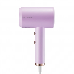 直白(zhibai)电吹风大功率恒温负离子冷热风护发电吹风筒HL326紫色升级套装