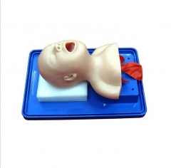 新生儿气管插管模型 小儿气管插管练习 医院护理训练货号100.X84