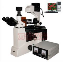 电脑型倒置生物显微镜XDS4C XDS4D 数码 倒置生物荧光 三目倒置  货号100.L43