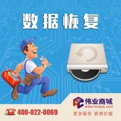 非计算机类存储介质软件故障数据恢复 货号100.H91 SD卡/CF卡/U盘/录音笔/光盘等