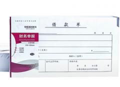 西玛(SIMAA)财务单据 借款单210*120mm 21*12cm 50页/本 10本装 货号100.C722
