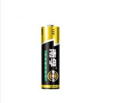 南孚(NANFU)LR6AA聚能环5号碱性电池 单节 货号:100.YJM