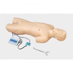 胃大部切除手术区消毒模型 院内新手消毒训练操作 货号100.HY111