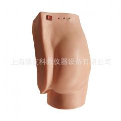 高级电子臀部注射训练模型,臀部注射实习,模拟仿真成人臀部结构 货号100.HY112