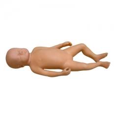 高级足月胎儿模型(男婴、女婴任选),护理人员培训,月嫂培训模型 货号100.HY112