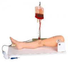 高级骨穿刺及股静脉穿刺模型 院内徒手训练模型 股静脉穿刺练习 货号100.HY112