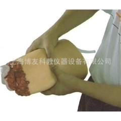 下肢外伤断肢止血模型 医学止血训练假肢模型  货号100.HY112