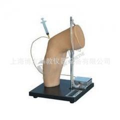 高级肘关节腔内注射模型 关节腔空刺训练模型 肱骨外上髁  货号100.HY112