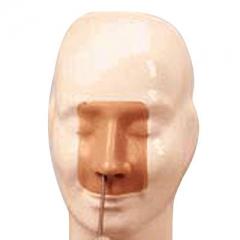 高级鼻腔出血模型教学实习护理模型 五官科检查模型  货号100.HY112