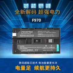 品胜F970 适用于索尼HDR-AX2000 货号:100.ZL