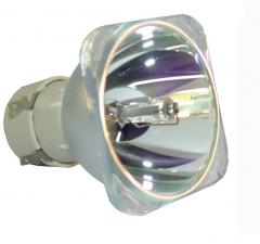 日立DT01411投影机灯泡  货号:100.G