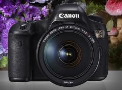佳能(Canon)EOS 5DS 数码单反相机 +EF 24-105mm f/4L IS II USM 全画幅专业套装     货号100.TL