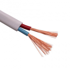 ADP 护套线纯铜国标铜芯线平方双芯铜线2.5平方电线线缆100米/盘货号095.J1