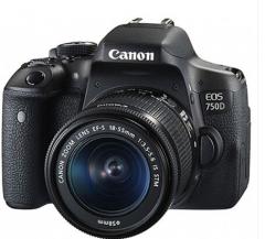 佳能(Canon)EOS 750D 单反套机 (EF-S 18-55mm f/3.5-5.6 IS STM镜头)  ZX.055