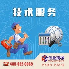 IT维护外包一年技术服务 货号190.W1