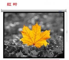 红叶(Redleaf) 120英寸 16:9 电动投影幕布  不含安装  IT.073